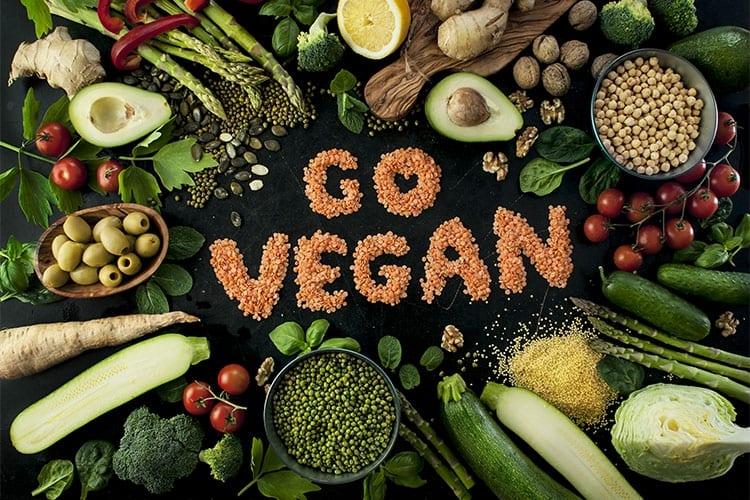E se o mundo todo virasse vegano do dia para a noite?